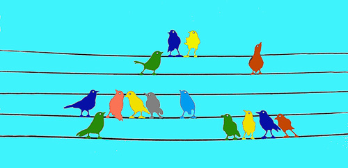 Bird-Chorus--1.jpg