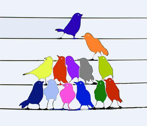 Bird-Chorus--3.jpg