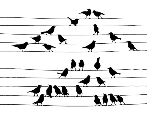 Musical-Birds--1.jpg