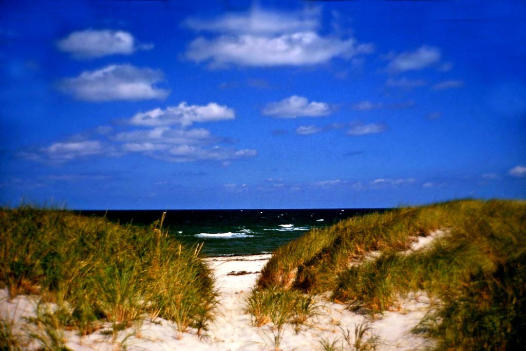 Beach-Grass-Path.jpg