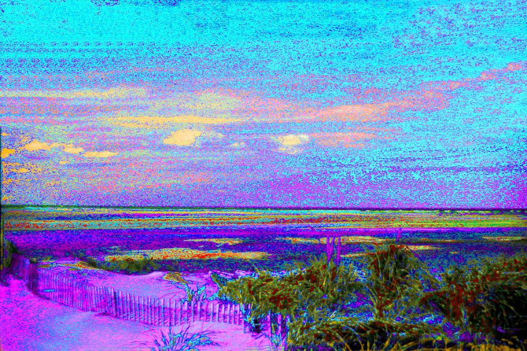 Blue-Sky-Marsh.jpg