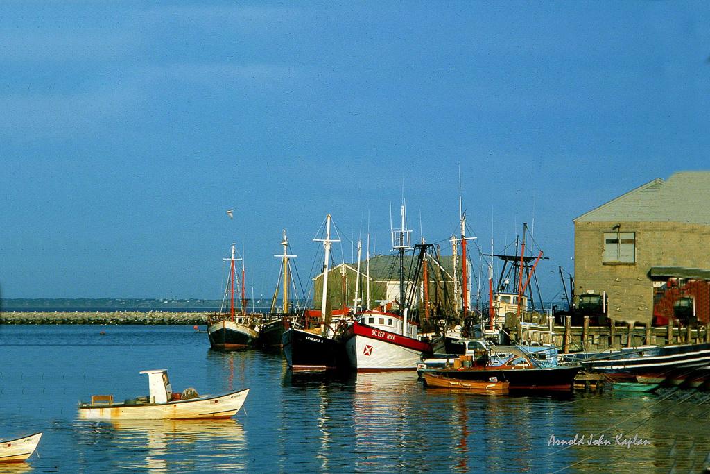 P--Town-Fish-Pier--1.jpg