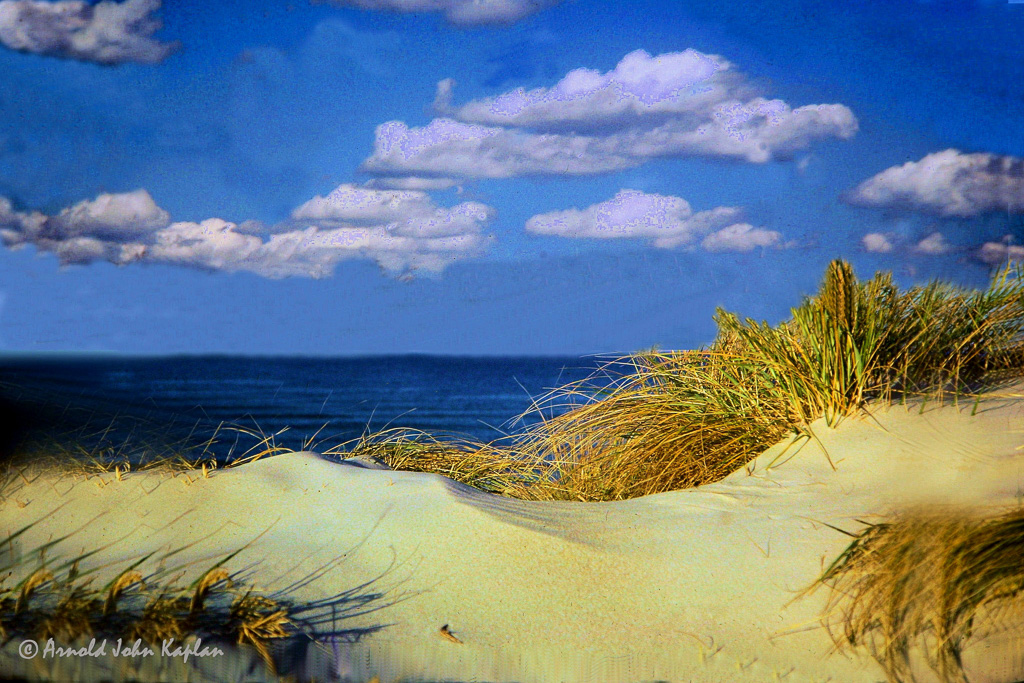 Sand-Dune-Grass.jpg