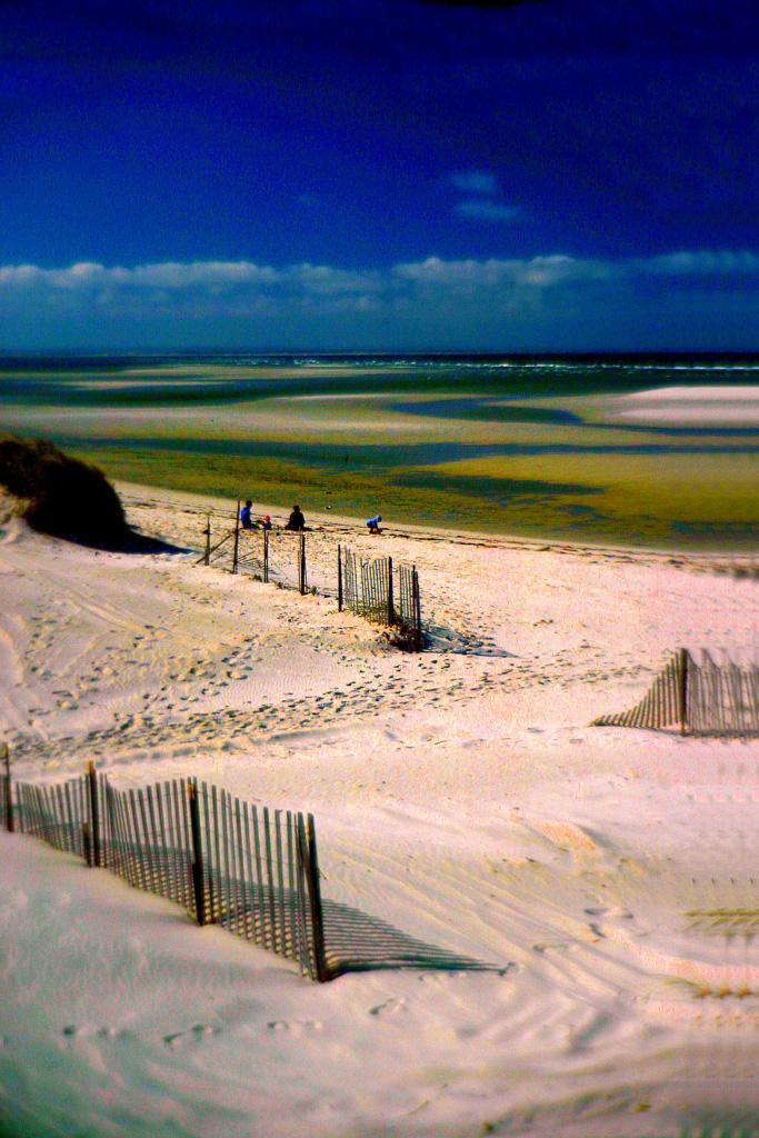 Sand-Fences-At-Low-Tide.jpg