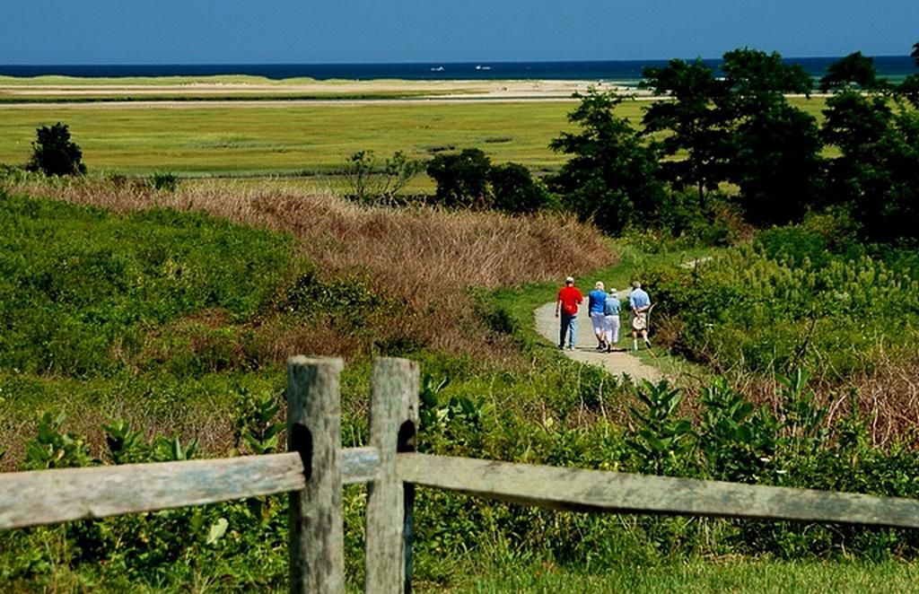 Walkway-to-Marshes.jpg