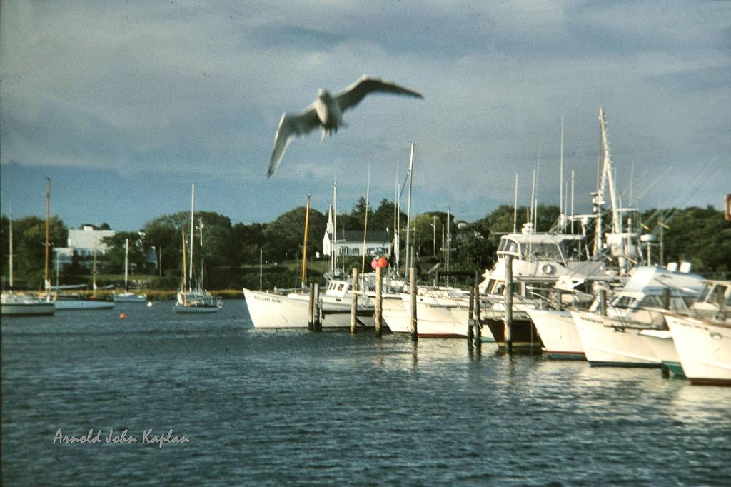 Wychmere-Harbor--2.jpg