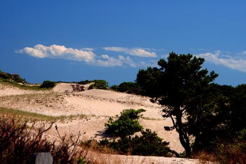 P-Town-Sand-Dune--2.jpg