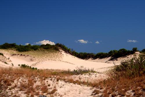 P-Town-Sand-Dune.jpg