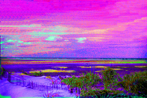 Purple-Sky-Marsh.jpg