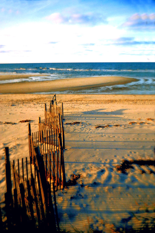 Sand-Fence-Low-Tide-3.jpg