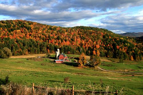 Hillside-Acres-Farm.jpg