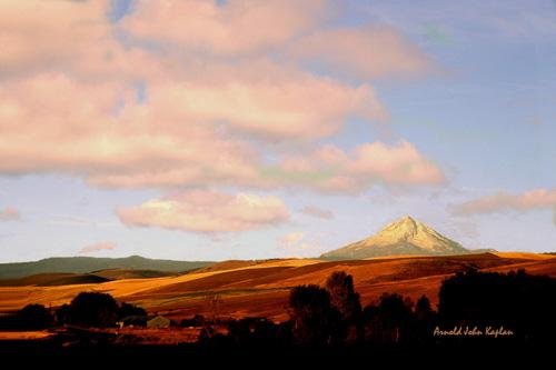 Mt-Hood-And-Wheat-Fields,-Oregon.jpg