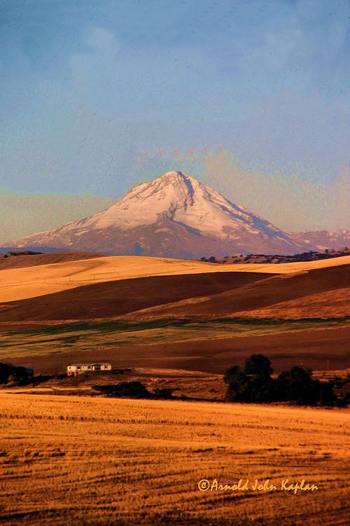Mt-Hood-And-Wheat-Fields.jpg