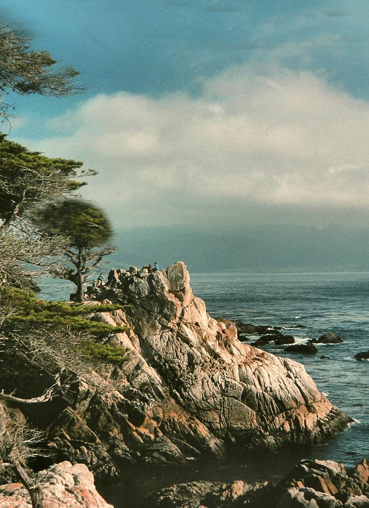 Lonesome-Pine.jpg
