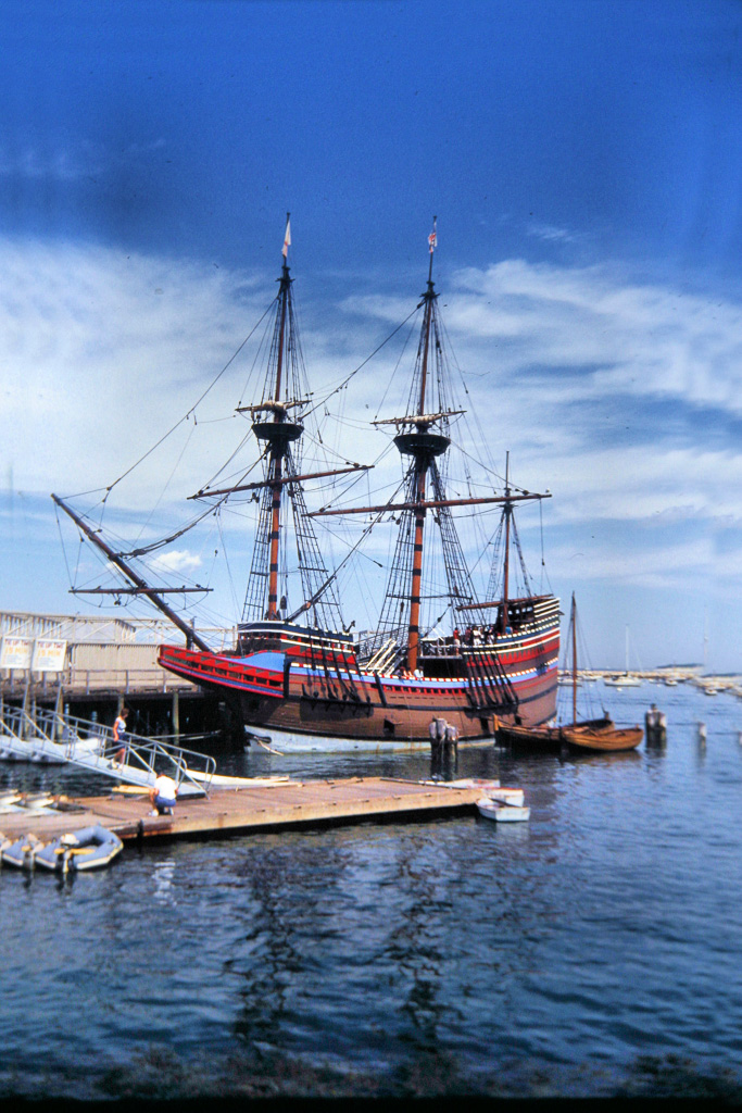 Mayflower--22.jpg