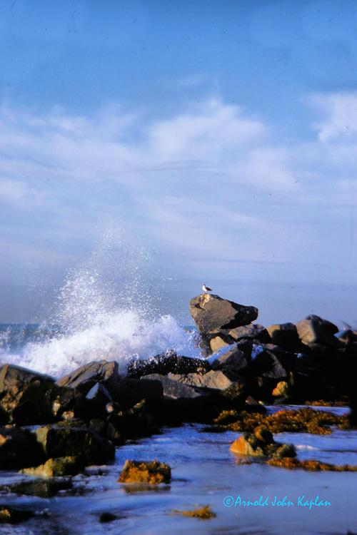 Breaking-Wave.jpg