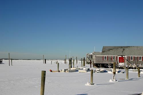 Frozen-Barnstable-Harbor.jpg