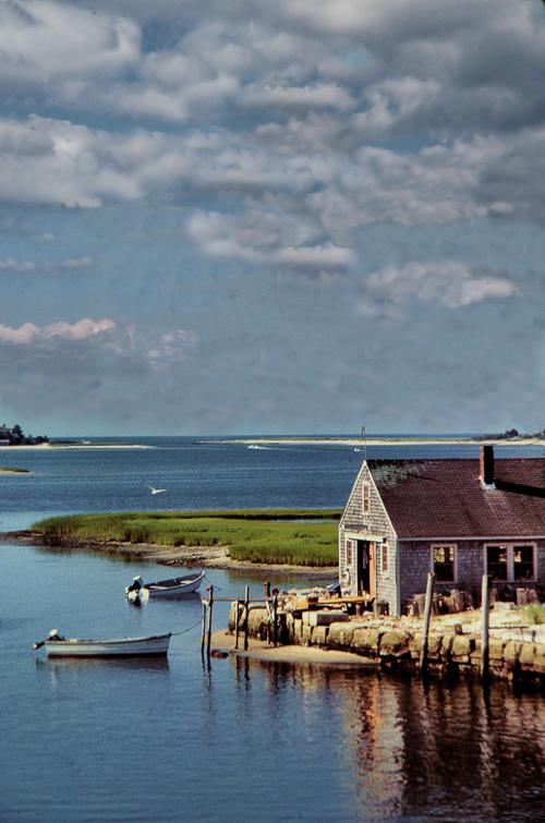 Little-Island-Shack.jpg