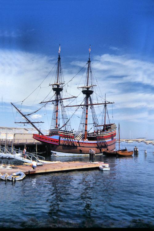 Mayflower--22.jpg