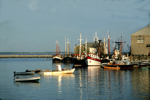 P-Town-Boats.jpg