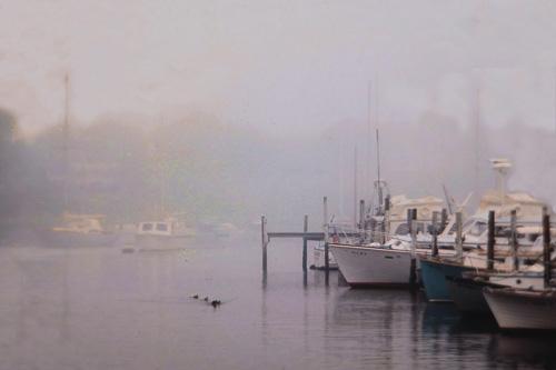 Wychmere-Harbor-Fog.jpg