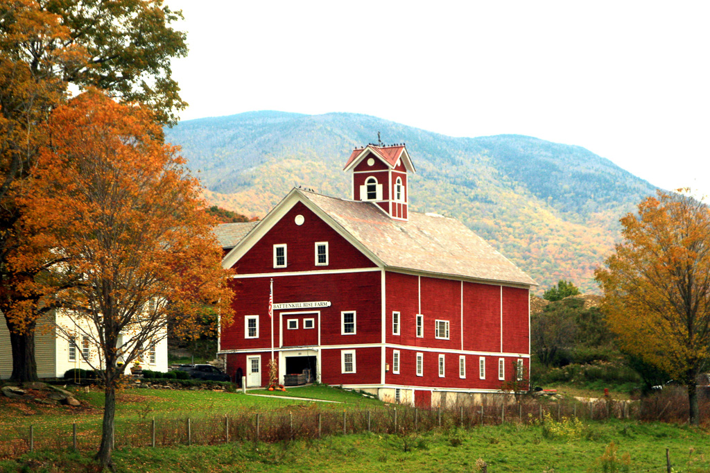 Batten-Rise-Farm.jpg
