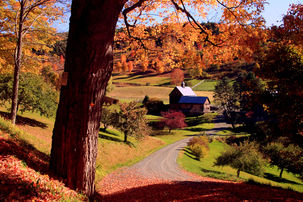 Gray-Farm-(Sleepy-Hollow).jpg