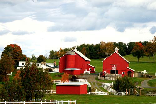 Cedar-Grove-Farm.jpg