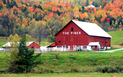 The-Pines-Barn.jpg
