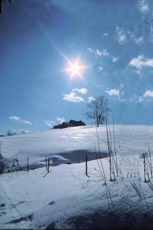 Vermont-Sunstar.jpg
